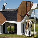 Dog Shape Home