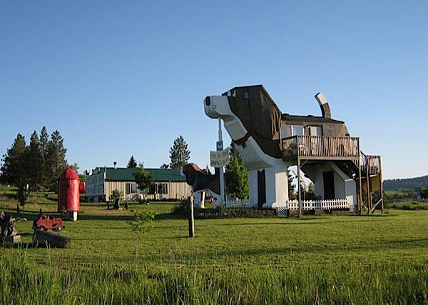 renosaw-dog-shape-hotel-3