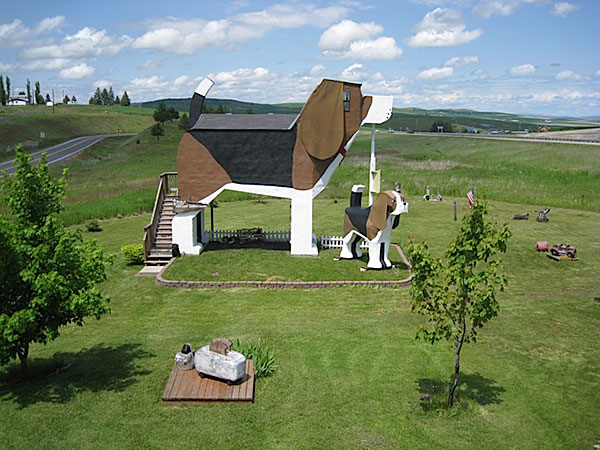 renosaw-dog-shape-hotel-4